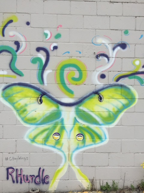 Luna Moth painted on building