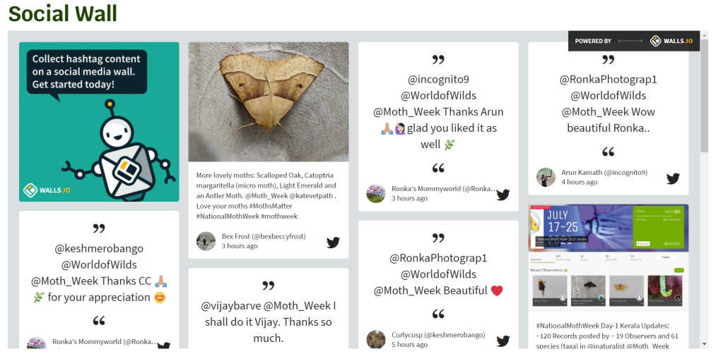 Screen Shot of NMW's Social Wall