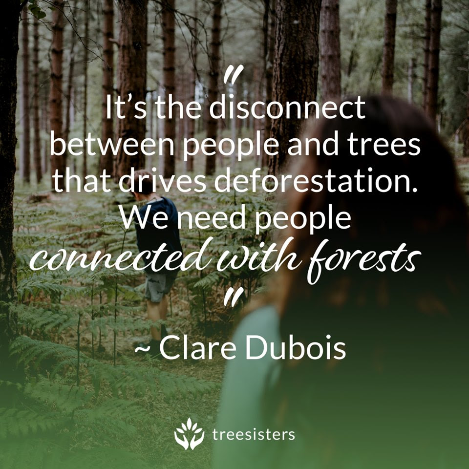 Quote: It's the disconnect between people and tress that drives deforestation. We need people connected with forests. Clare Dubois