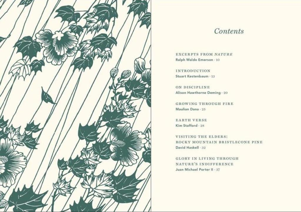Visualizing Nature -Table of Contents
